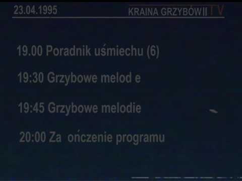 Kraina Grzybów II - Program dnia 1995 (Fan-made)