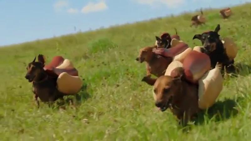 HEINZ Ketchup 2016 Hot Dog Commercial the Wiener Stampede
