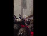 Наргиз Закирова  - Концерт 2016