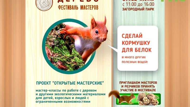 21 и 22 июля с 11.00 до 16.00 в Загородном парке Самары пройдет фестиваль Дерево