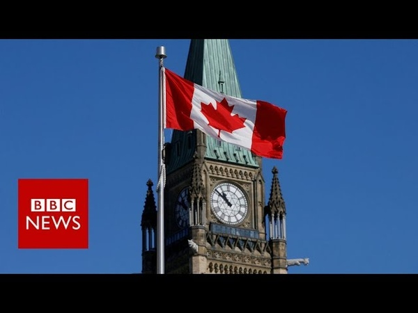 Canadians react to Trump's shoe smuggling claim - BBC News