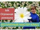 Ростовые цветы Бесплатный мастер класс Большая ромашка Large chamomile
