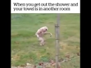 When you get out of the shower and your towel is in another room