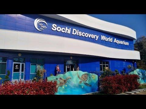 В Сочи на мотоцикле - Океанариум Sochi Discovery World Aquarium
