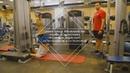 Эффективные упражнения при грыжах позвоночника, протрузиях, радикулите, остеохондрозе и остеопорозе