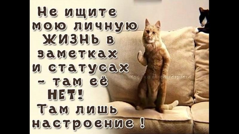 Мирзоева Алеся.mp4