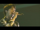 Jung Yong Hwa - CNBLUE - Summer Dream