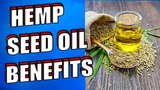 Amazing Hemp Seed Oil Benefits & Uses for Skin, Hair & Cancer