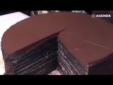 23-слойный шоколадный торт