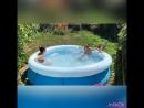 Миниатюра «Летние забавы» 😂😂😂