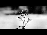 Chopin - Spring Waltz (Mariage dAmour) [Please Read Description]