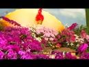 한없는 그리움이 펼친 태양의 꽃바다 -제20차 김일성화축전장을 찾아서- (2)