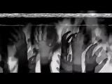 Психодел (Элеонора Кислотная) кислота лсд психоделика Psychedelic