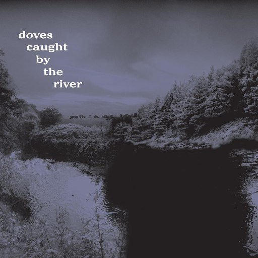 Doves альбом Caught By The River