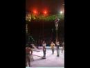 Цирк на Вернадского 2017