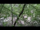 Ураган В Москве 18-05-2018 18:12:39