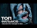 ТОП фильмов для вечера пятницы №1 (10 фильмов ужасов про поездку в лес)