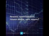 Анализ: крипторынок пошел вверх, чего ждать?