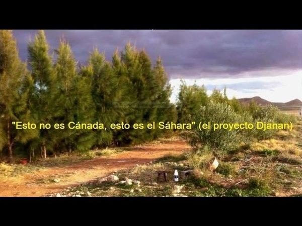 Combatir las sequías (1) - el trabajo bioenergético aplicado al tiempo (Bernd Senf)