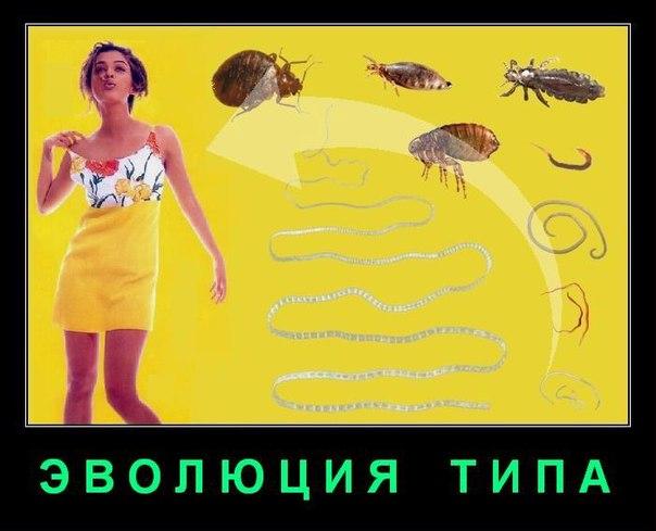 ПАРАЗИТЫ - это женщины, живущие за счет ресурсов другого организма (мужчины), извлекая из него питательные вещества и материальные блага. Это причиняет вред мужчине.