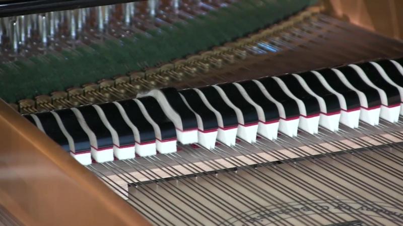 Отчетный концерт отделения фортепиано 2018 (ДШИ Гармония г.Пензы)