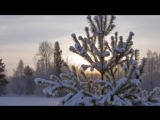 Зимняя сказка под музыку М. Таривердиева.mp3
