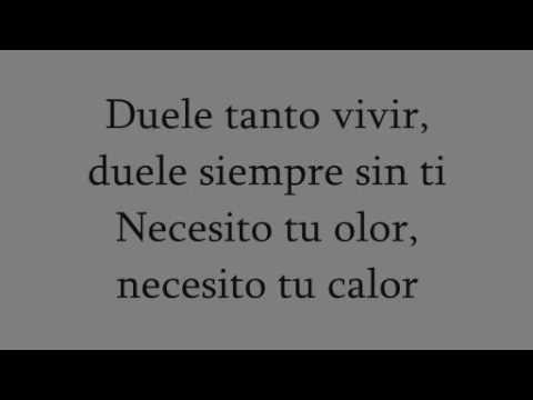 Siempre (Adios Dulcinea parte II)-Mägo de Oz (con lyrics-letra)