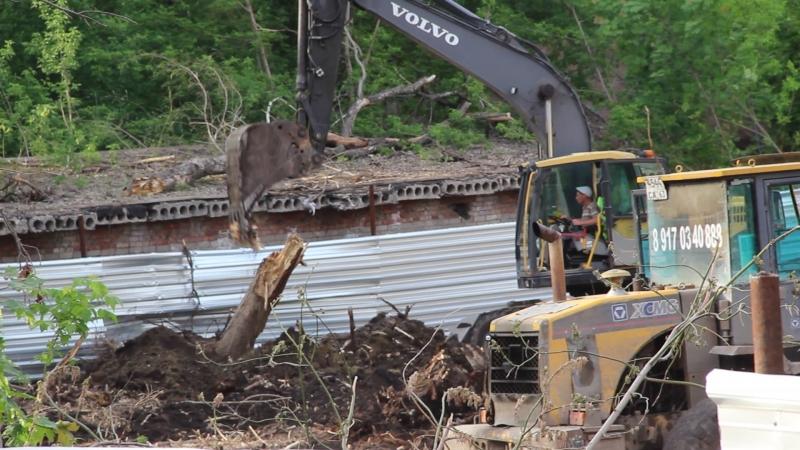 Вырубка деревьев на 5 Просеке