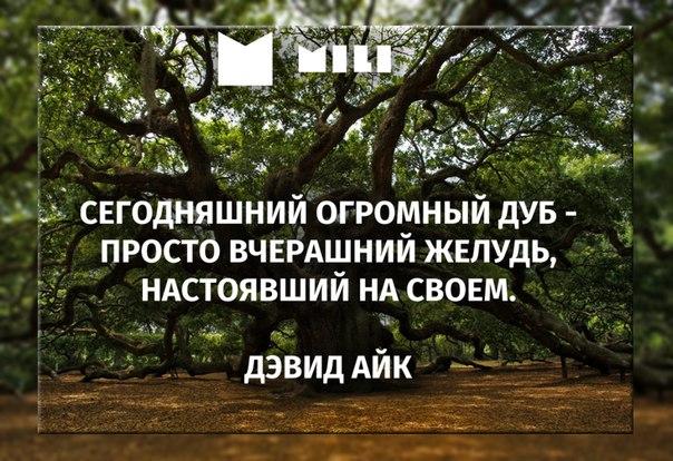 #мили #микрозаймы #mili #цитата