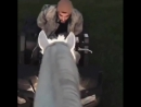 VIDEO Gigi Hadid via IG