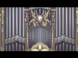 Хвост фей Fairy tail 1 сезон 47 серия озвучка Ancord