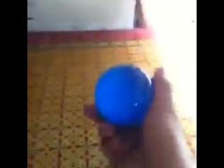 Blue Balls (Vine).mp4