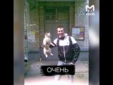 Парень из Череповца 3 года фотографируется держа котов за шкирку