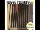 План побега ОдноКавказцы