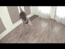Exotic pole dance \ tadiksa \ samara