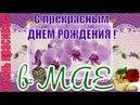 С Днем рождения в МАЕ очень красивое видео поздравление музыка и цветы МАЯ
