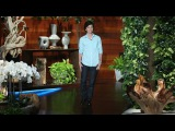 Tig Notaro Talks About Her Twins