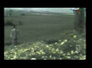 Baba Mirzeyev - Ceyran bala