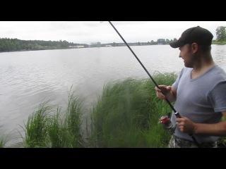 Рыбалка в Раменском рыбхозе