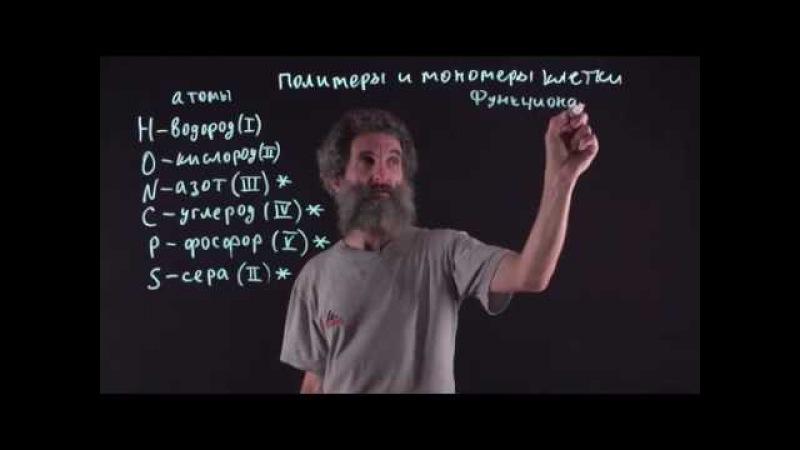 Цитология. Лекция 15. Функциональные группы органических молекул. Окштейн И.Л.