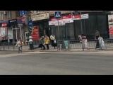 Бродячая собака переходит через дорогу