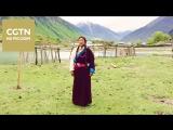 Тибетская народная песня Боян