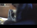 UltraHD_4K_Upskirt_Video_No.92154_(FullH