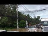 Самуйский сезон дождей