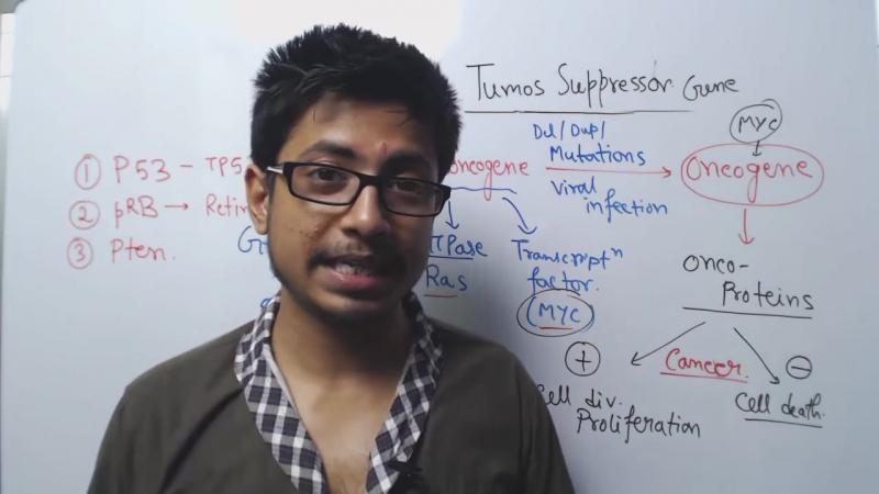 Cancer Biology - Tumor Suppressor Genes - p53, pten, p21, pRB