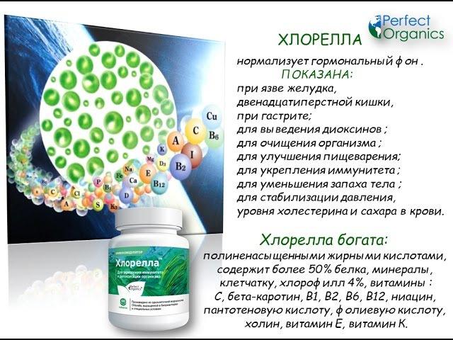 Perfect Organics. ХЛОРЕЛЛА. Полезные свойства. Д.С. Дергачев.