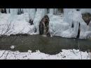 А ты видел водопады зимой? Чегемские водопады зимой. Кабардино балкария, Водопад...