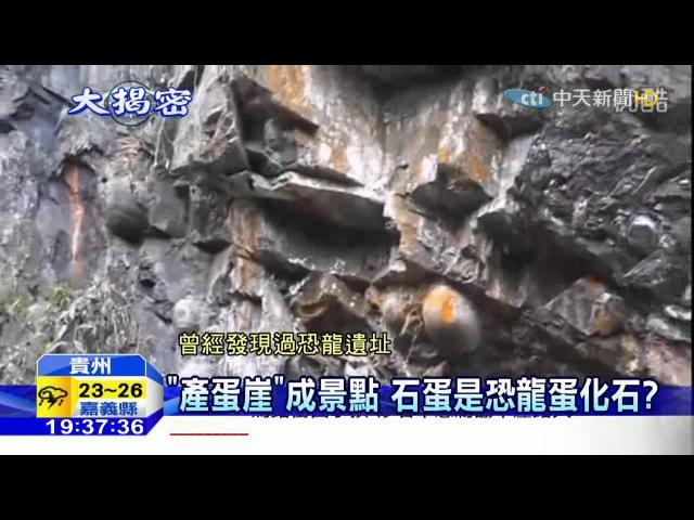 20160414中天新聞 懸崖石壁會生蛋?「產蛋崖」之謎揭秘