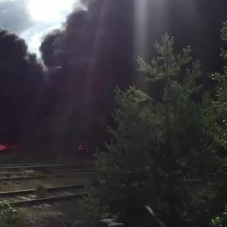 Пожар в Сосновом Бору возле территории УАТ