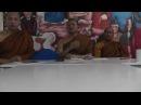 Аджан Чаукун Прасерт Основные концепции и положения буддизма часть 1